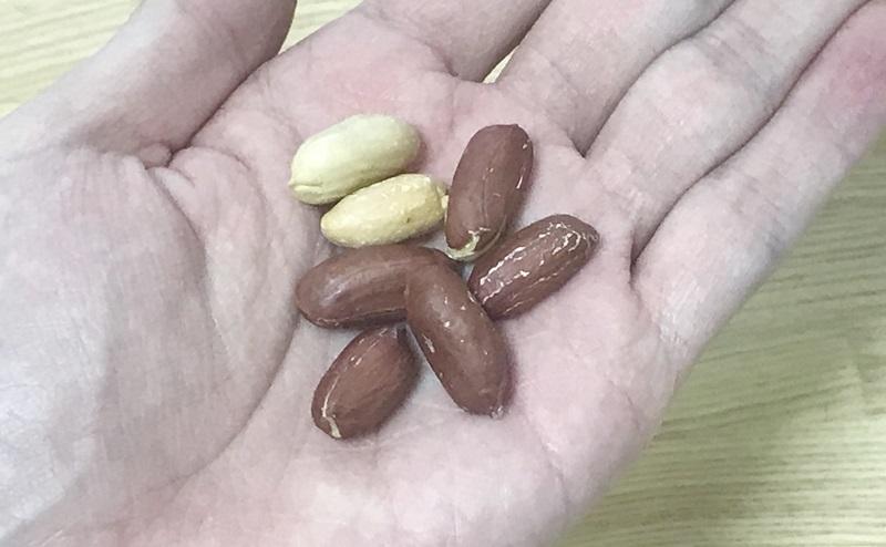 【ローソン】素焼きピーナッツ